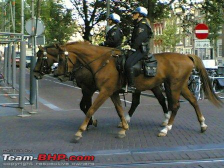89747d1231965574-ultimate-cop-cars-police-cars-around-world-police-amsterdam-horse