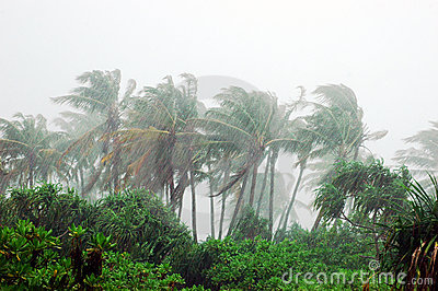 storm-tropical-island-3608839