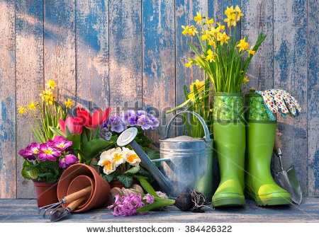 stock-photo-gardening-tools-and-flowers-on-the-terrace-in-the-garden-384426322