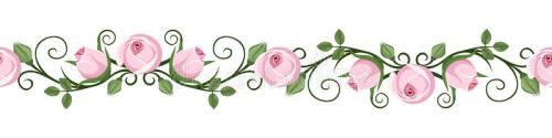 vintage-horizontal-seamless-vignettes-pink-rose-buds-vector-illustration-calligraphic-vignette-white-background-34452760
