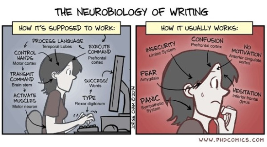 neurobiology-of-writing